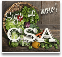 sign up now for CSA