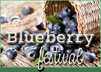 festivalBerry